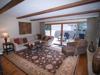 HOPKINS LUXURY CHALET #2S - Aspen vacation rentals