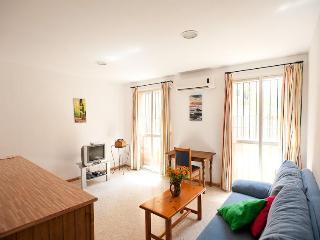 1 Bedroom Beautiful Apartment on Sevilla Center - Seville vacation rentals