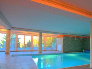 Villa Albert - 6 bedroom Home with indoor Pool - Budapest vacation rentals
