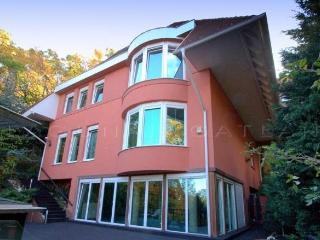 Villa Albert - 6 bedroom Home with indoor Pool - Budapest vacation rentals