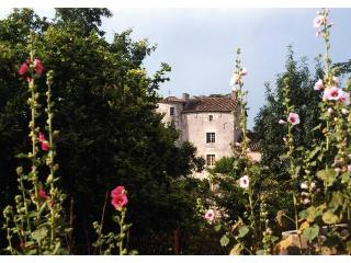 Chateau D'ax - Chateau Only - Bagat En Quercy vacation rentals