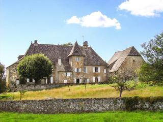 Chateau De Camiller - Auvergne vacation rentals