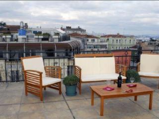 SULTANAHMET DELUXE TERRACE APARTMENT - Istanbul vacation rentals