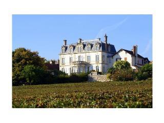france/burgundy/chateau-de-mercury - Mercurey vacation rentals