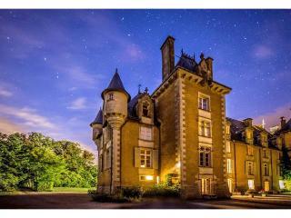 france/vendee-charente/chateau-de-st-jean - Vienne vacation rentals