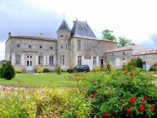 Chateau St Surin - Bad Schonborn vacation rentals