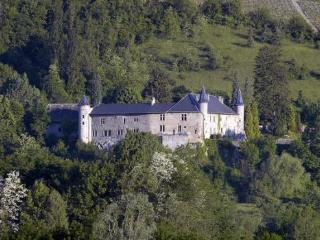 Chateau Ste Genevieve - Savoie vacation rentals