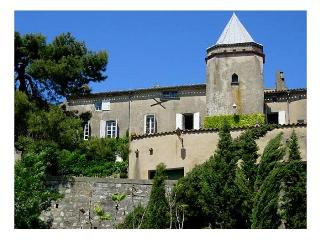 france/languedoc/chateau-carcassona - Aude vacation rentals