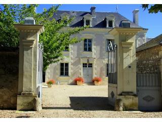 france/loire-valley/chateau-de-grazay - Chaveignes vacation rentals