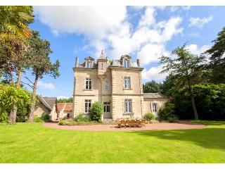 france/loire-valley/chateau-de-vigner - Doue-la-Fontaine vacation rentals
