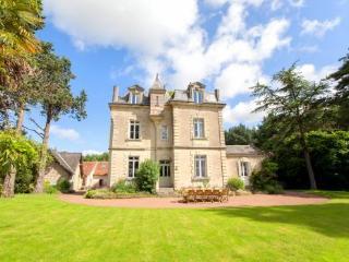 114-chateau-de-vigner-estate - Doue-la-Fontaine vacation rentals