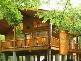 Helen Riverside Cabin - Walk to Alpine Helen! - Blairsville vacation rentals
