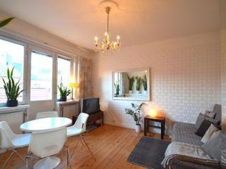 SoFo,Bright topfloor with balcony! - Stockholm vacation rentals