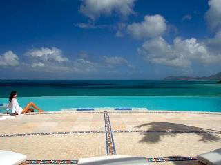 Luxury 11 bedroom St. Martin villa. Luxury - Gourmet Chef! - Terres Basses vacation rentals