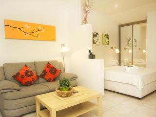 Raanana Luxury - Deluxe Studio  + Garden - REF04 - Ra'anana vacation rentals