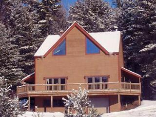 Immaculate Stratton Mount Snow Vacation Home - Jamaica vacation rentals
