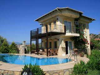 VILLA ORKIDE, pool and jacuzzi with Rock Tomb view - Dalyan vacation rentals