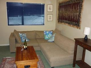 Pinedale Apartment - Methven vacation rentals