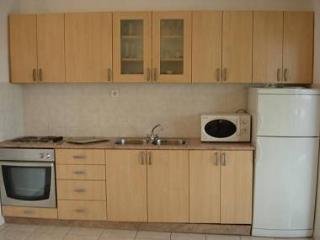 2729  A3(2+2) - Okrug Donji - Okrug Donji vacation rentals