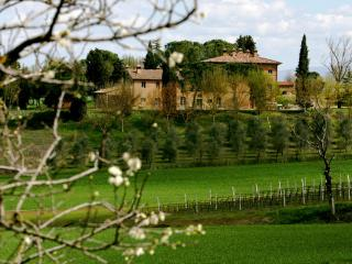 Casa Paterna, an elegant Tuscan/Umbrian retreat - Tavernelle vacation rentals