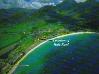 Lovely Home Hanalei, Kauai - Minute to Water Edge - Hanalei vacation rentals