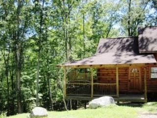 Romantic Sherwood Cabin, Soak in the Scenery! - Hot Springs vacation rentals