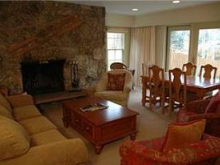 CHATEAU CHRISTIAN, 120 - Image 1 - Vail - rentals