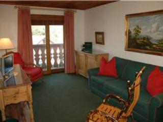 CHRISTIANIA LODGE, 305 - Image 1 - Vail - rentals
