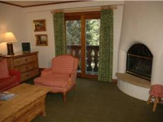 CHRISTIANIA LODGE, 308 - Image 1 - Vail - rentals