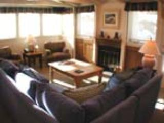 PLAZA LODGE #5 - Image 1 - Vail - rentals