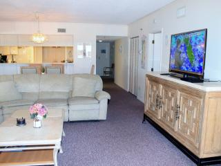 Stunning Ocean View Condo!  Flat Screen TV, WiFi - Indian Rocks Beach vacation rentals