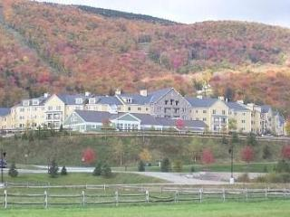 Ski-in/out Luxury 1 King Bdrm @ Okemo JacksonGore - Ludlow vacation rentals