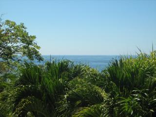 Villa la Jungla - Tambor vacation rentals