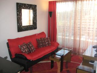 2 room condo in Providencia (Santiago center) A/C - Santiago vacation rentals