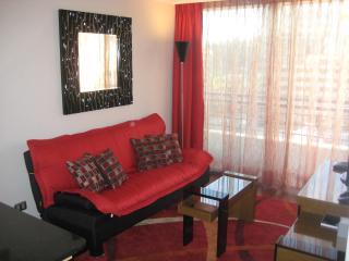 2 room condo in Providencia (Santiago center) A/C - Vina del Mar vacation rentals