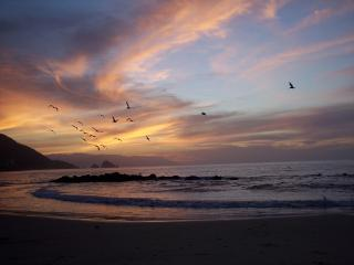 Ocean Front -  Affordable Luxury on South Shore - Puerto Vallarta vacation rentals