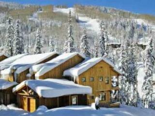 black bear in the winter - BlackBear 110 - Durango - rentals
