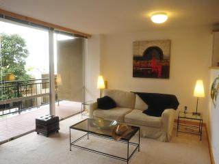 Big Luxury Condo►Pier 39►Coit Tower, Sleeps4-6 - San Francisco vacation rentals