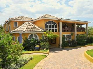 BEACH WALK! STAFF! POOL! SECURITY! Sand Dollar - Jamaica vacation rentals