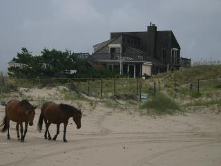 Charming Private Oceanfront Home in 4X4 Area - Corolla vacation rentals
