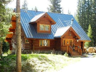 Log Cabin in the Woods - A true Mountain Retreat - Breckenridge vacation rentals