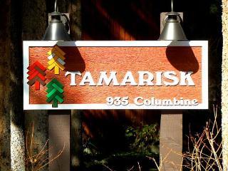 Tamarisk 203 - Breckenridge vacation rentals