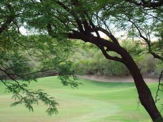 Large 2 bedr-2nd Floor with Ventana Canon Golf Course Views! - Tucson vacation rentals