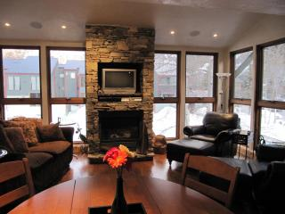 Bluegrass Festival & 4th of July Haven - Telluride vacation rentals