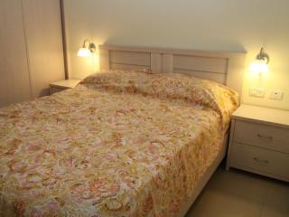 2 room, 1 bedroom luxury vacation apartment - Herzlia vacation rentals
