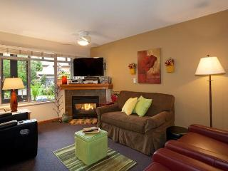Sunpath #11 well equipped condo;  free parking;  A/C units for summer - Whistler vacation rentals