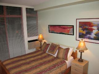 Doina Arcalean - Whistler vacation rentals
