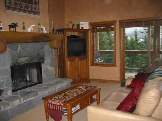 Nice Condo with Deck and Internet Access - Whistler vacation rentals
