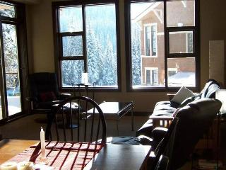 Nice Condo with Internet Access and DVD Player - Sun Peaks vacation rentals