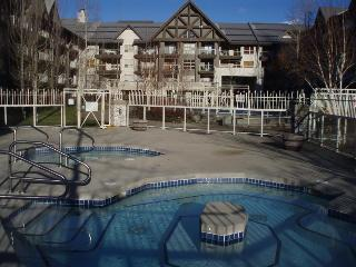 Whistler Condo - Ski In Ski Out - Whistler vacation rentals
